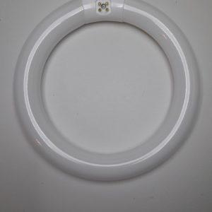 Ampoule fluorescente 22W circline RADIUM